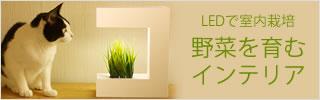 LEDで室内栽培 野菜を育むインテリア 灯菜