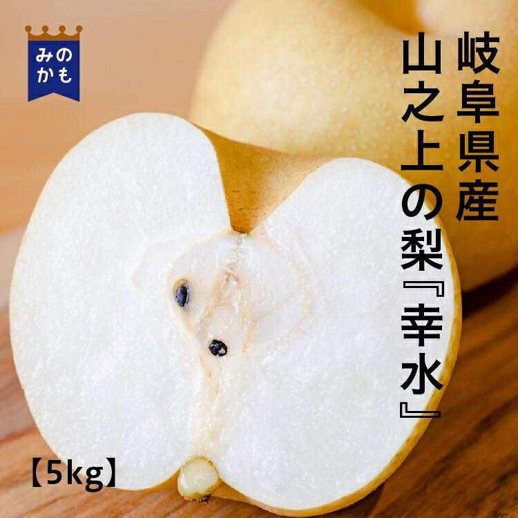 梨・幸水5kg