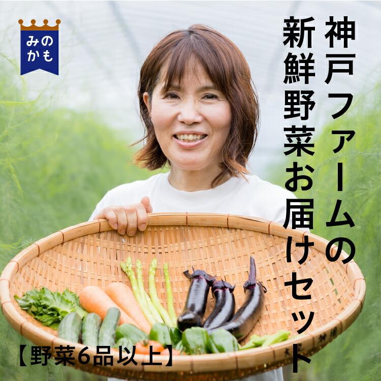神戸ファームの新鮮野菜お届けセット