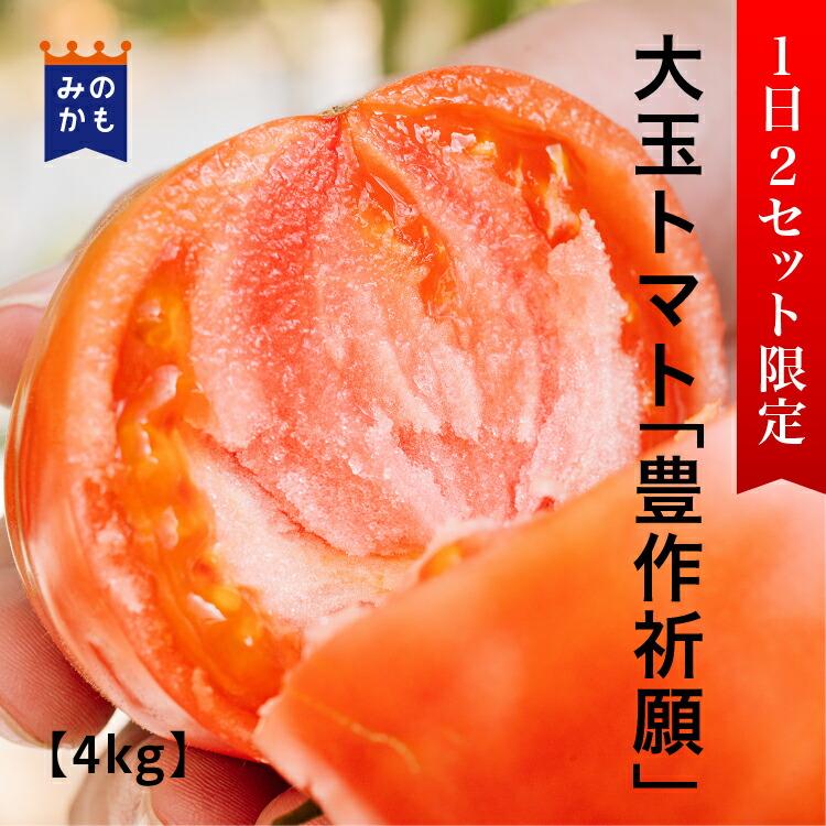 【1日5セット限定】農家直送 大玉トマト「豊作祈願」4kg