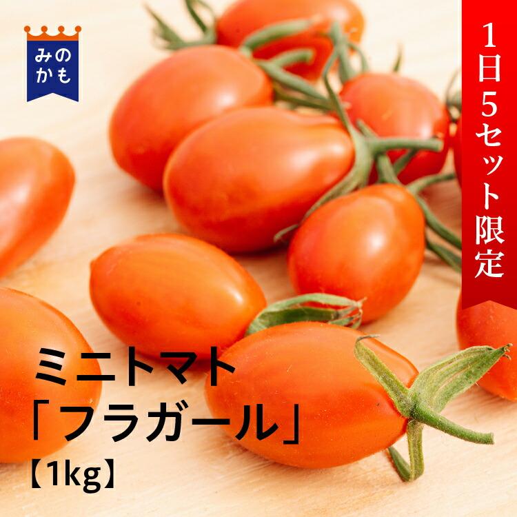 農家直送 ミニトマト「フラガール」1kg