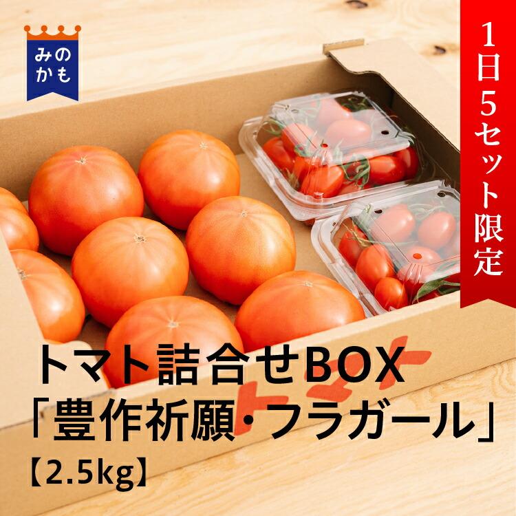 【1日5セット限定】農家直送 トマト詰合せBOX「豊作祈願」「フラガール」2.5kg