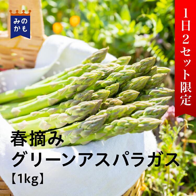 【農家直送】春摘みグリーンアスパラガス 1kg