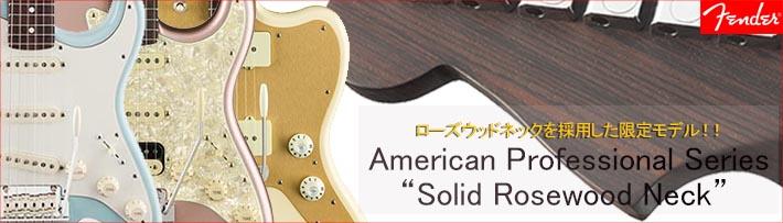 Fender AM PRO Roseneck