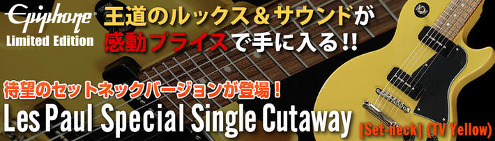 LP Spl Single Cutaway SetNeck