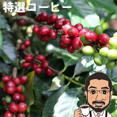 【送料無料】数量限定 特選コーヒー200g