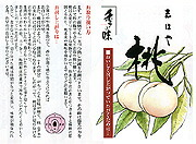 桃の説明書