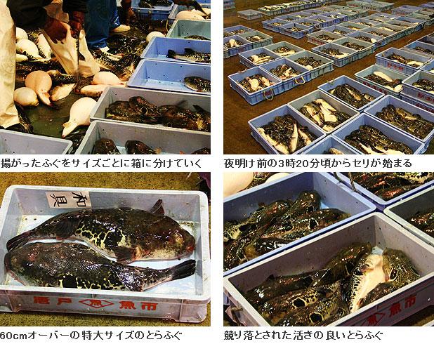 下関南風泊市場1