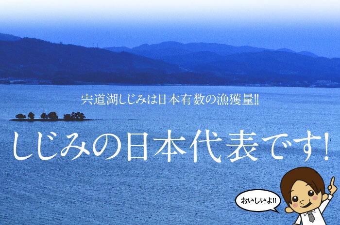 宍道湖しじみはしじみの日本代表