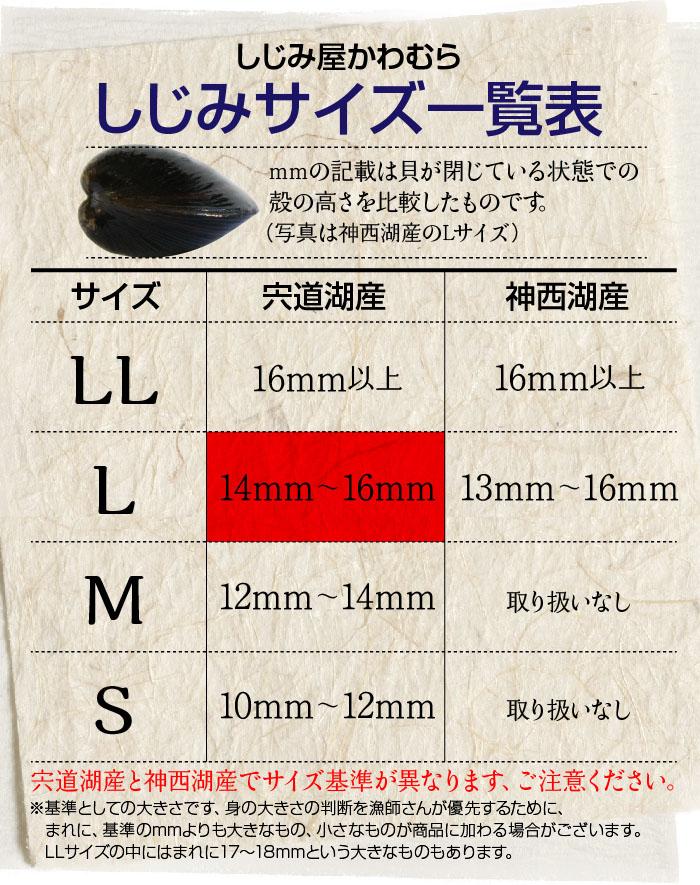 Lサイズは、殻の高さ14ミリ〜16ミリ
