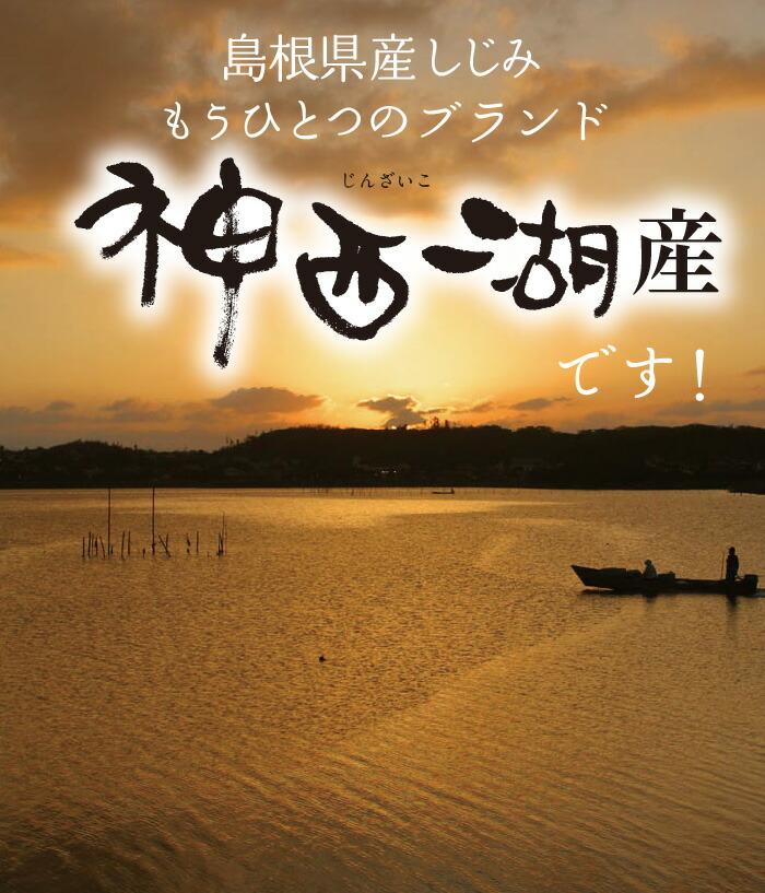 島根県産しじみのもう一つのブランド 神西湖しじみ