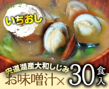 レトルトみそ汁30食(送料込)