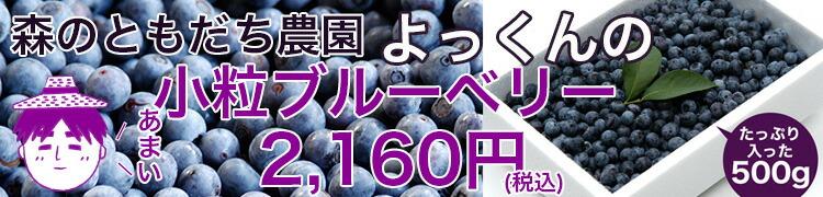 よっくんの小粒ブルーベリー500g
