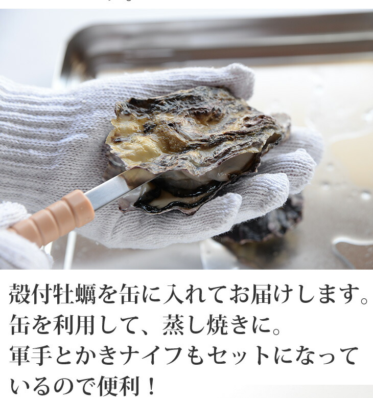 急速冷凍した真牡蠣