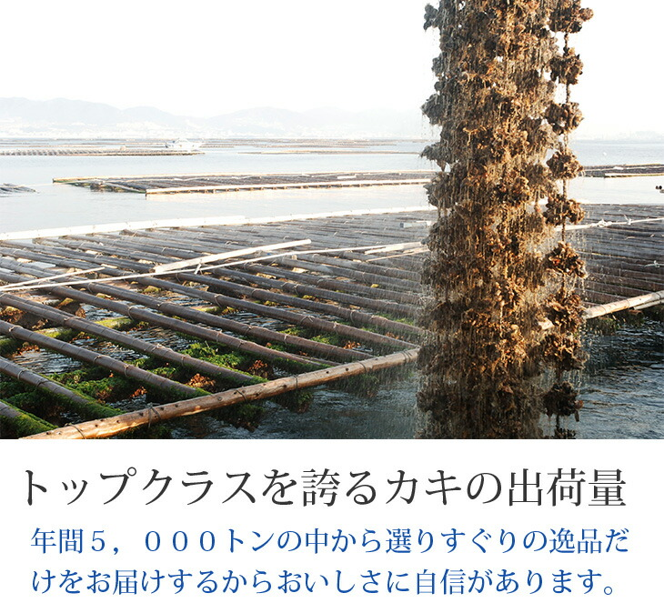 瀬戸内 牡蠣
