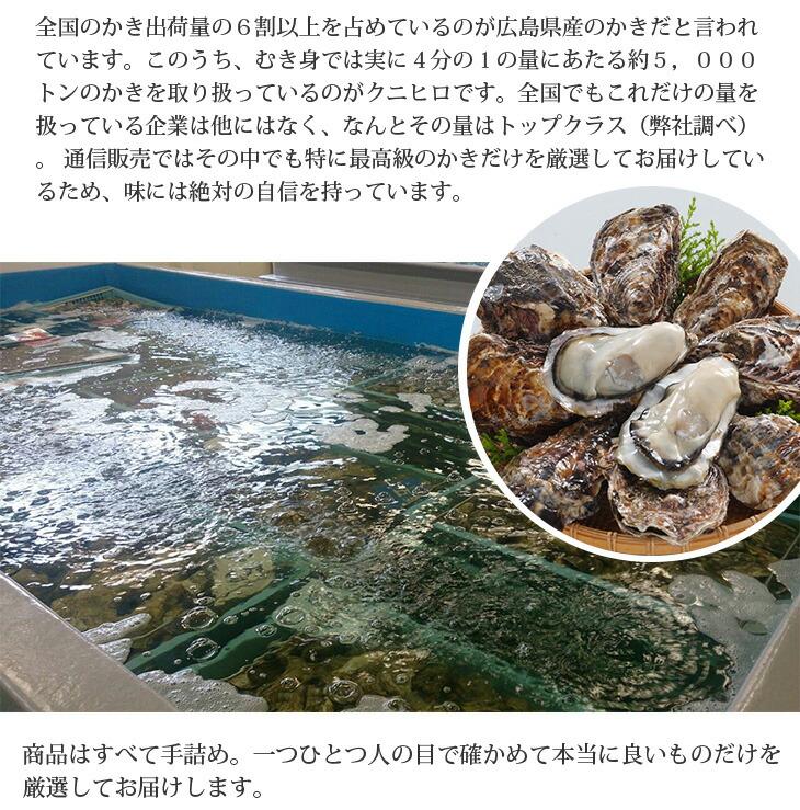 広島県産 かき