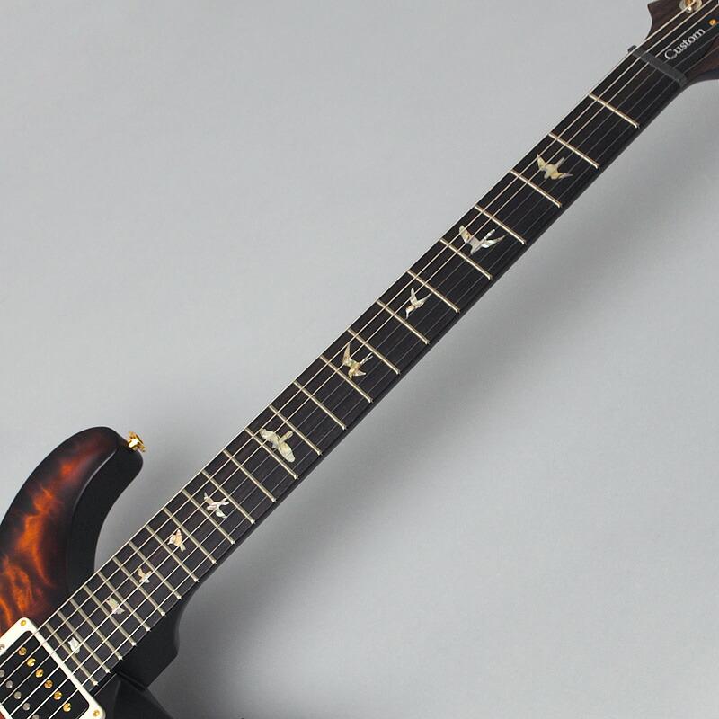Custom24/2016 LIMITED 指板画像