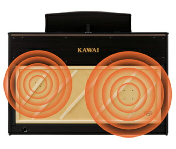 TWINDRIVE響板スピーカーシステム
