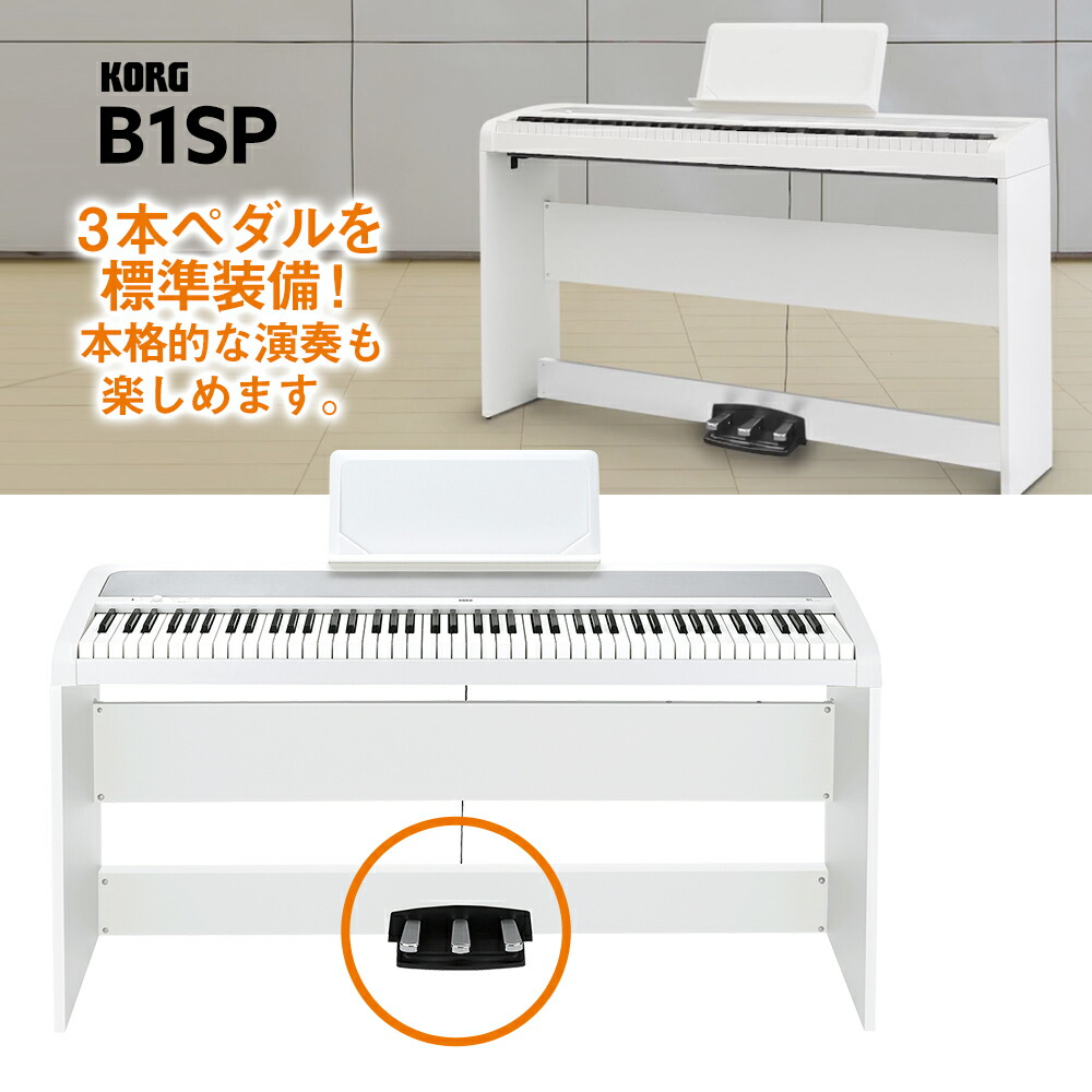 B1SP-1