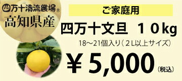四万十文旦 10kg (家庭用)