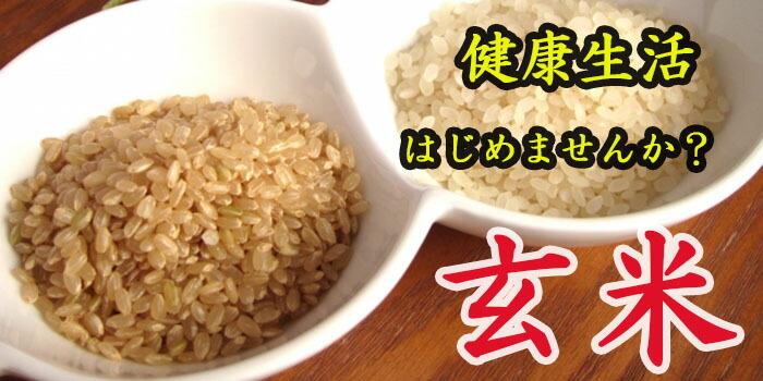 玄米 げんまい