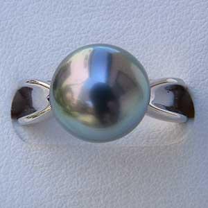 タヒチ黒蝶真珠リング:PT900:プラチナ:指輪