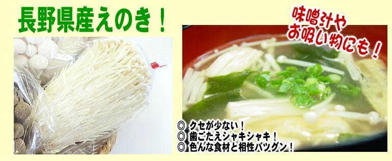 長野県産えのき!芋川さんちでとれた新鮮シャキシャキのえのきです!