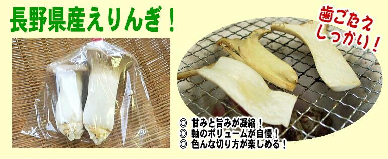 すごすぎる歯ごたえ!長野県産えりんぎ!甘みと旨みたっぷりきのこ