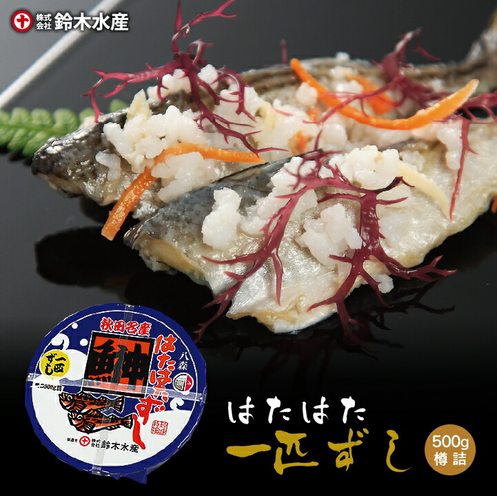 【鈴木水産/送料無料】はたはた一匹ずし500g(樽詰)[冷凍]