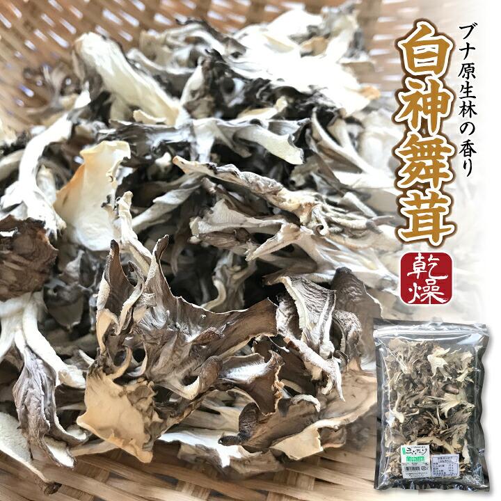 【送料無料】ブナ原生林の香り 白神舞茸(乾燥)30g入×1袋[常温]