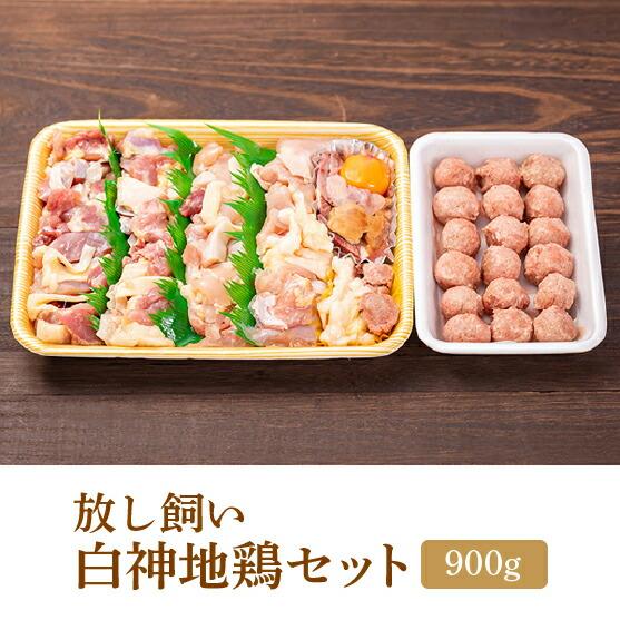 【送料無料】放し飼い 白神地鶏セット(900g)[冷凍]