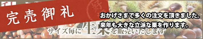 今年も愛媛県城川産生栗を販売!