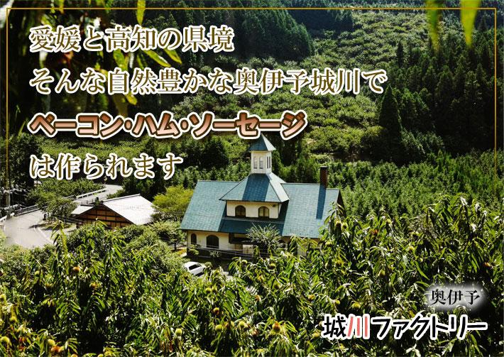 城川ファクトリーは愛媛と高知の県境