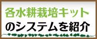 水耕栽培システムの紹介