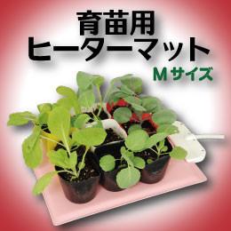 水耕栽培の自然緑商事