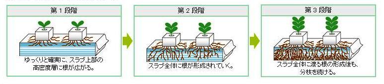 水耕栽培用ロックウール