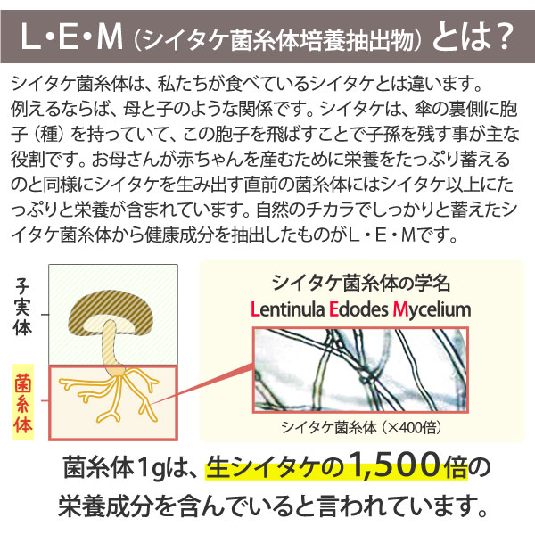 L・E・M(シイタケ菌糸体培養抽出物)とは?