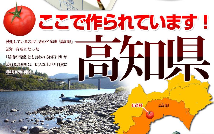 産地は高知県