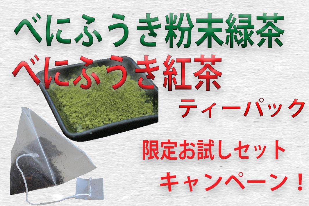 お試し限定キャンペーン!「べにふうき粉末緑茶」と「べにふうき紅茶ティーパック」