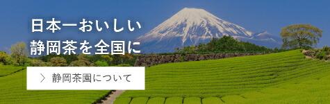 静岡茶園とは