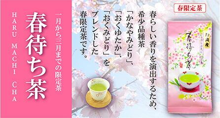 春待ち茶バナー