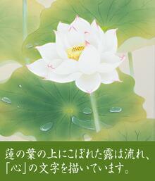 蓮の花アップ