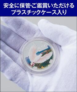 美しい色彩に彩られたカラー銀貨を手のひらで眺める喜びは格別です