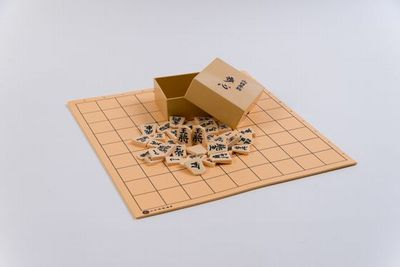 プラ駒並とソフト盤の写真