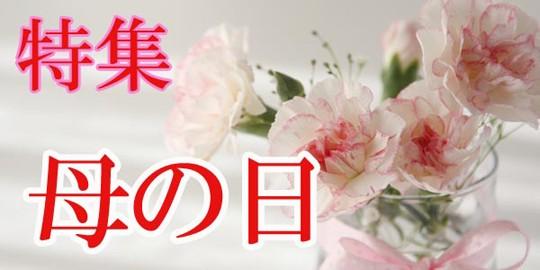 清水焼松韻堂母の日ラッピング