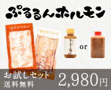 【送料無料】人気ホルモン食べ比べセット