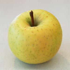青森産りんご「星の金貨」の写真
