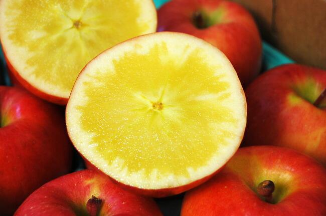 青森産こみつりんご
