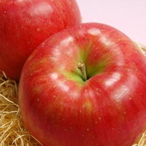 長野産りんご