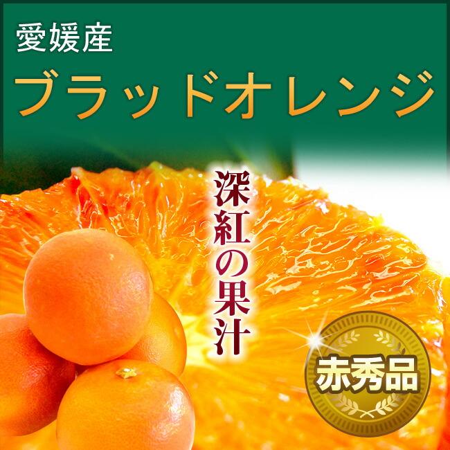 愛媛産ブラッドオレンジ【赤秀品】